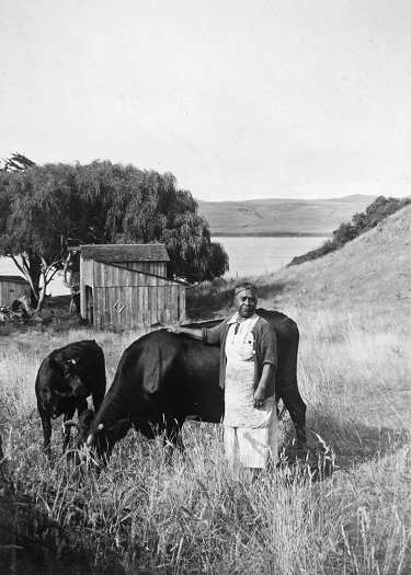 Bertha Felix Campigli with her cow at Laird's Landing